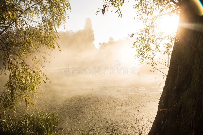 Brouillard sur la rivière images stock