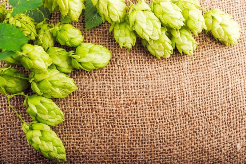 Brouwend concept Ingrediënten voor bierproductie stock foto's