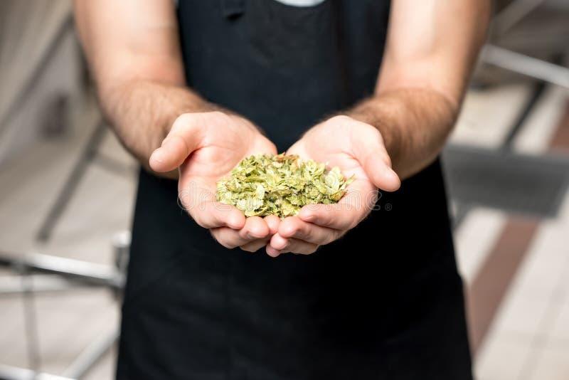 Brouwer met hop royalty-vrije stock afbeelding