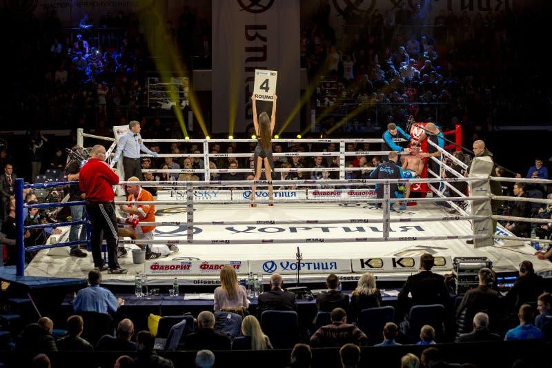 Brovary L'Ukraine, 14 11 2015 boxeurs sont dans les coins de l'anneau pendant une coupure entre les ronds dans la boxe La fille d photos libres de droits