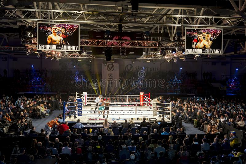 Brovary. Ukraine, 14.11.2015 Professional boxing match. Two scoreboards with annonce are over the ring. Referee stock image