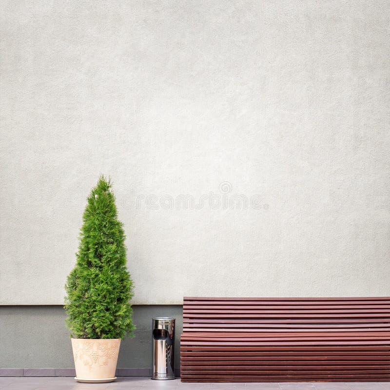 Brown ławka, metalu kosz na śmieci i tuja blisko ściany, obrazy stock
