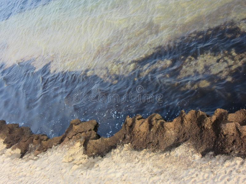 Brown algae on the beach of the Black Sea. Brown algae beautifully separate the sea and the coast. Aerial view. Atmospheric beautiful natural background royalty free stock photos