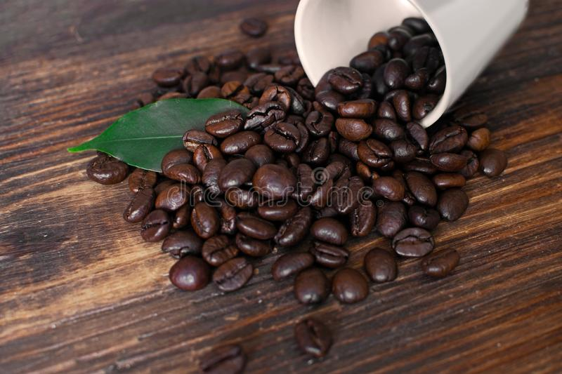 Brown arabica coffee beans with leaf and cup on a wooden board. Shiny fresh roasted arabica coffee beans with green leaf and cup on a wooden board royalty free stock image