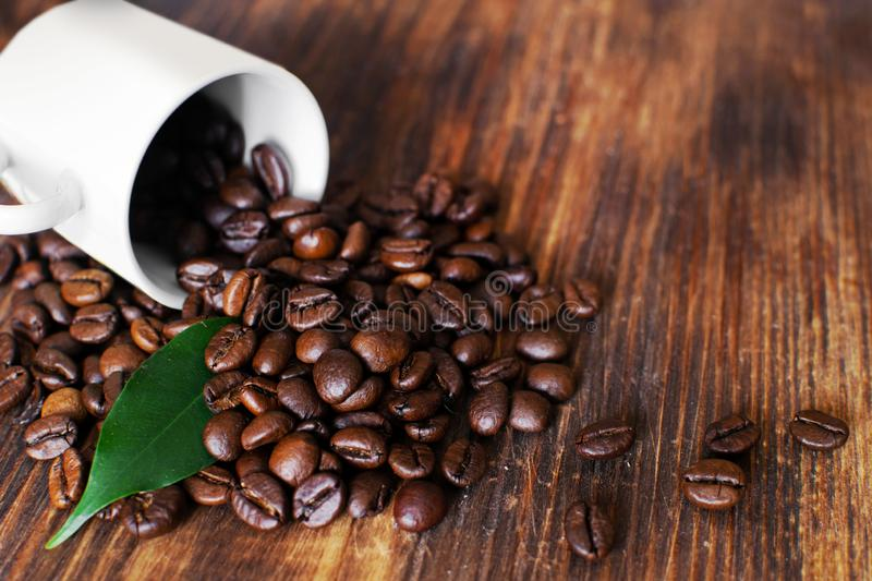 Brown arabica coffee beans with leaf and cup on a wooden board. Shiny fresh roasted arabica coffee beans with green leaf and cup on a wooden board stock photography
