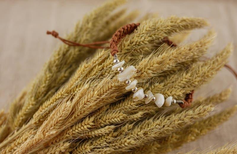 Brown-Armband und trockenes Gras stockfoto
