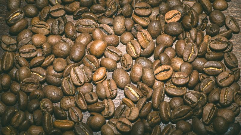 Brown coffee beans in the morning stock images