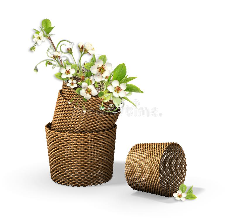 Download Brown Backets With Apple Tree Flowers Stock Illustration - Illustration of leaf, love: 13877294