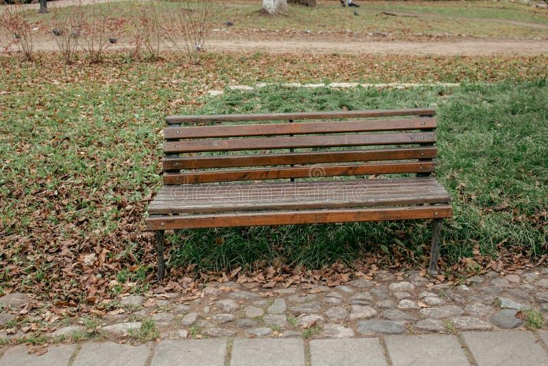 Brown-Bank im Herbstpark von St Petersburg stockfotos