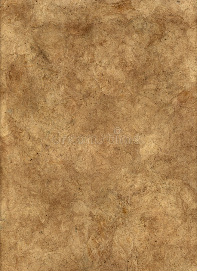 Brown Bark Paper. royalty free stock photo