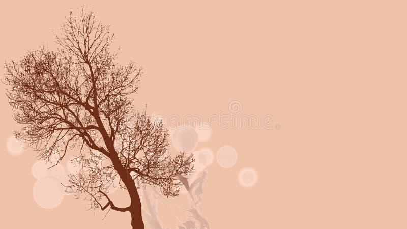 Brown-Baum auf rosa Hintergrund stockbild