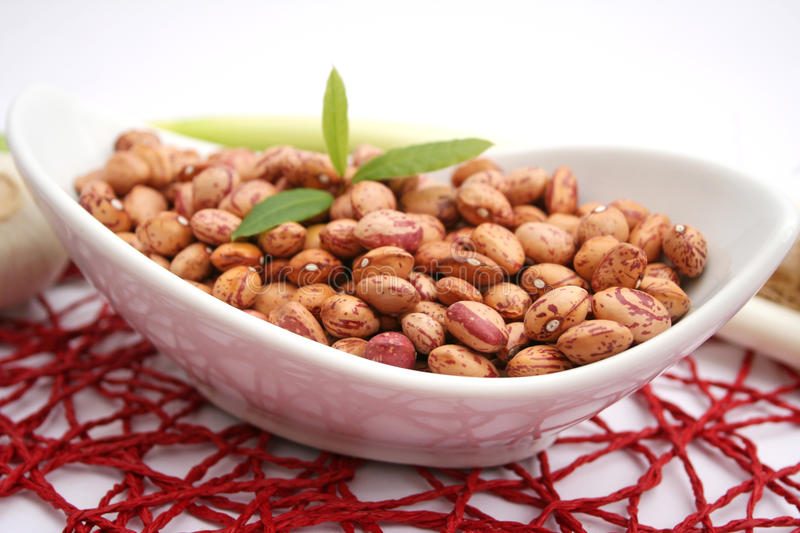 Brown beans stock photography