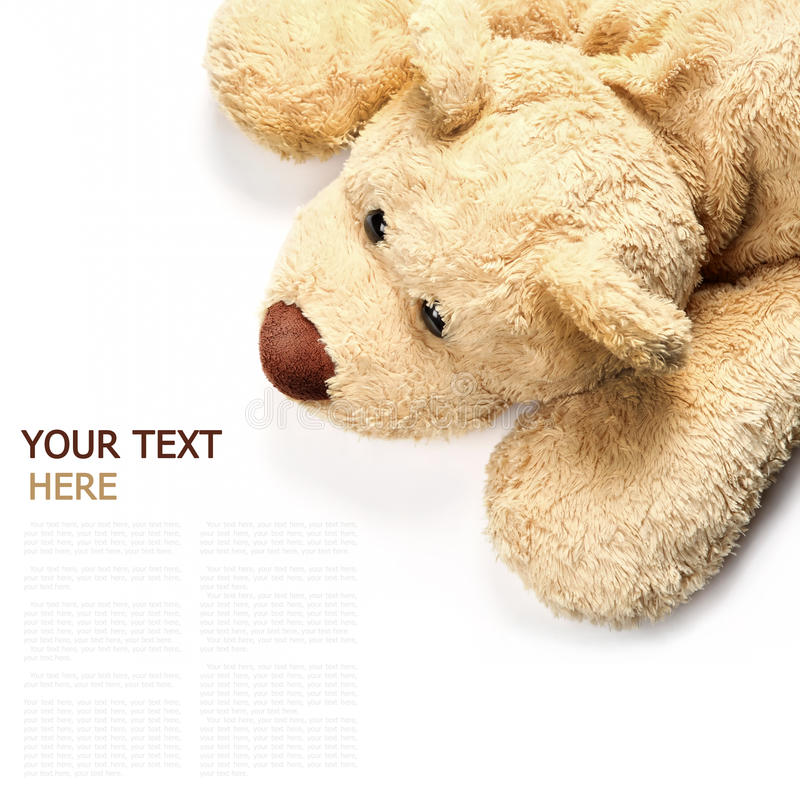 Download Brown Bear Lying On A White Background Stock Image - Image: 22369411