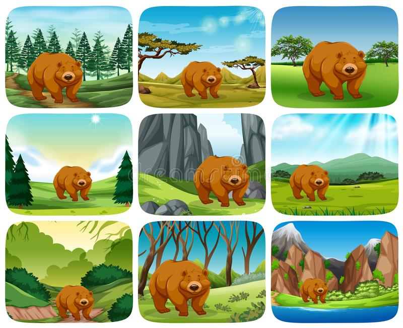 Brown bear in nature scenes stock illustration
