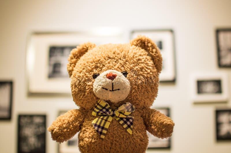 Brown Bear Plush Toy royalty free stock photo