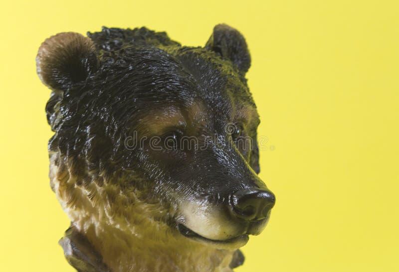 Bear Portrait Yellow
