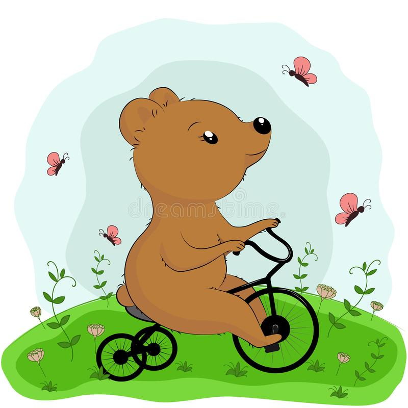 Brown bear riding a bicycle on the grass royalty free stock images