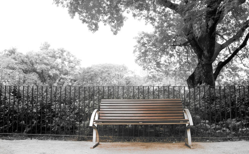 Download Brown Bench With Nobody In The Park Stock Image - Image: 11458077