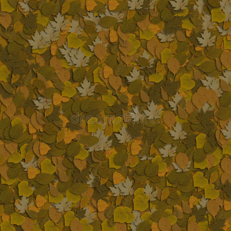 Brown-Blätter 4 stockfotografie