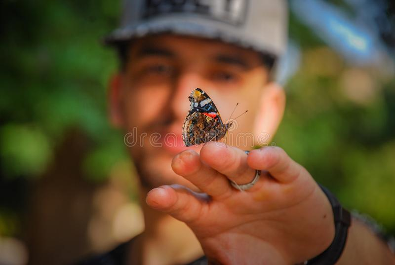 Brown and Black Butterfly on Man's Hand royalty free stock photos