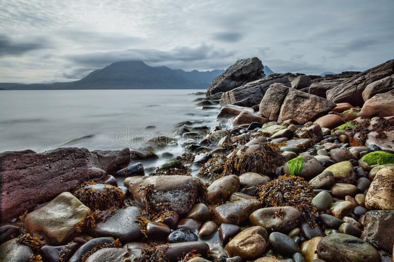 Brown Black and Gray Rocks Near the Shore stock photography