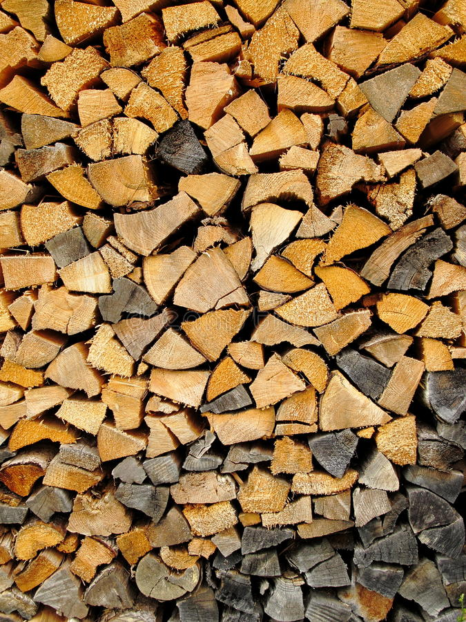 Download Brown And Black Tree Stumps Stock Image - Image: 21056857