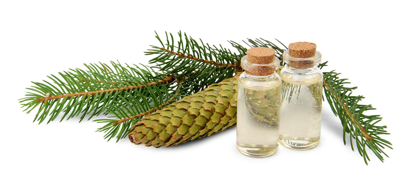 Brown bottle of spruce essential oil and fir branches stock photo