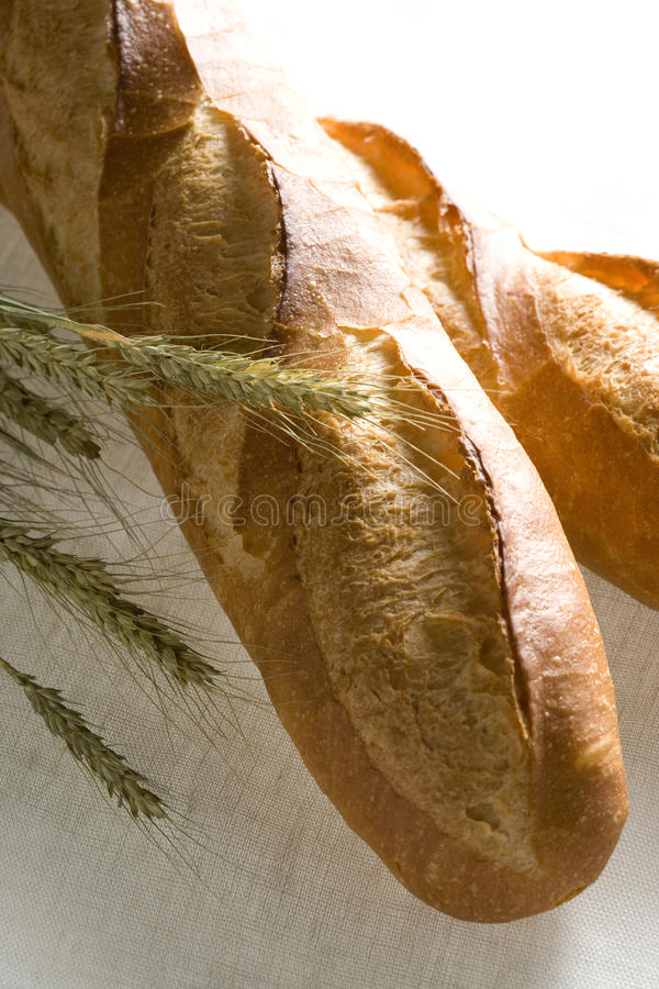 Download Brown Bread stock image. Image of tasty, white, food - 10154191