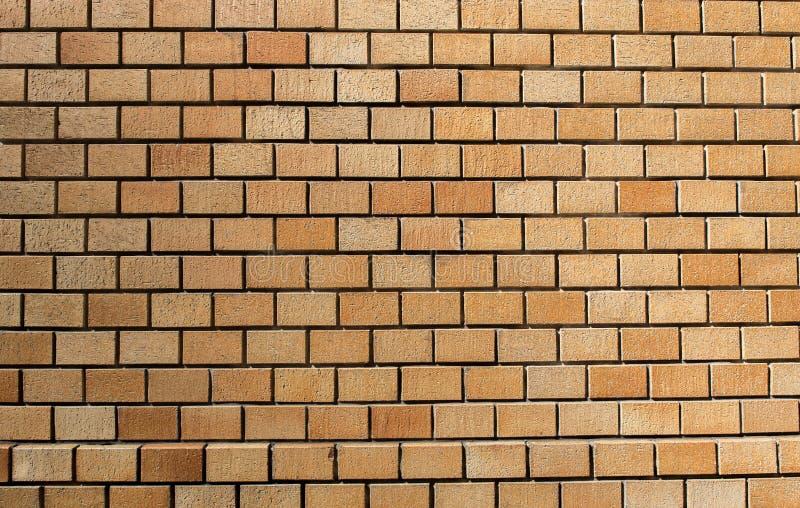 Brown bricks. Window of a novice photographer royalty free stock photos