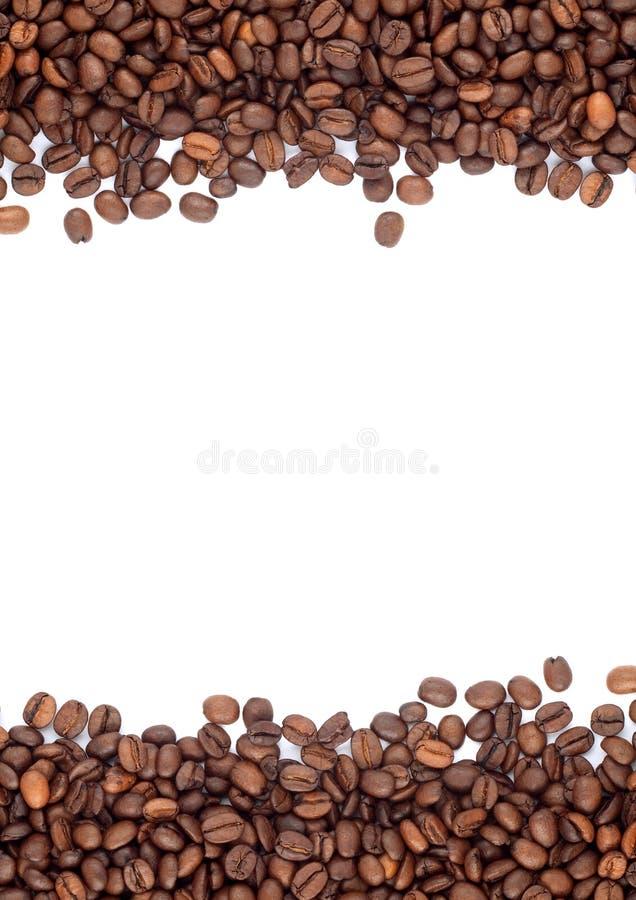 Brown briet Kaffeebohnen stockfotografie