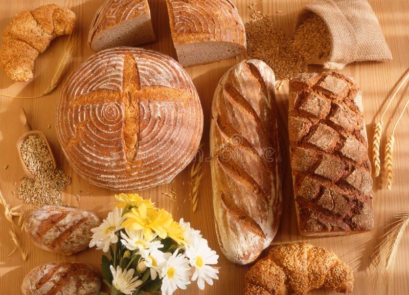 Brown-Brot stockbild