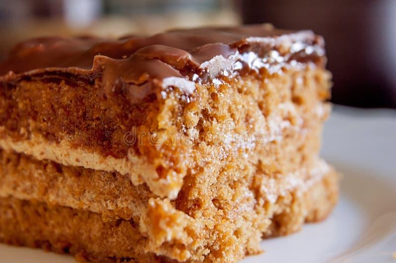 Brown cake macro image. Brown cake on plate macro image royalty free stock images