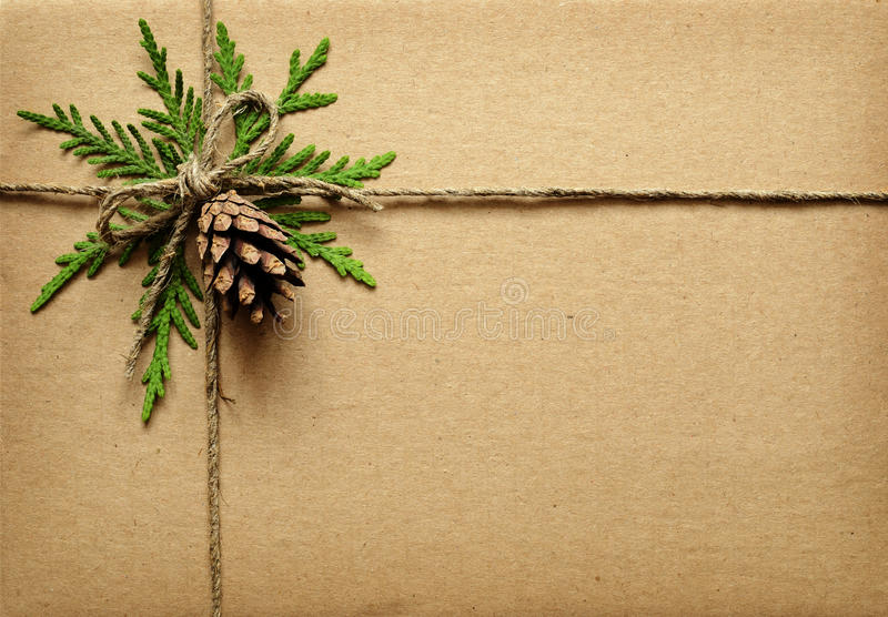 Brown cardboard box tied with green twigs, cone and rope. royalty free stock images