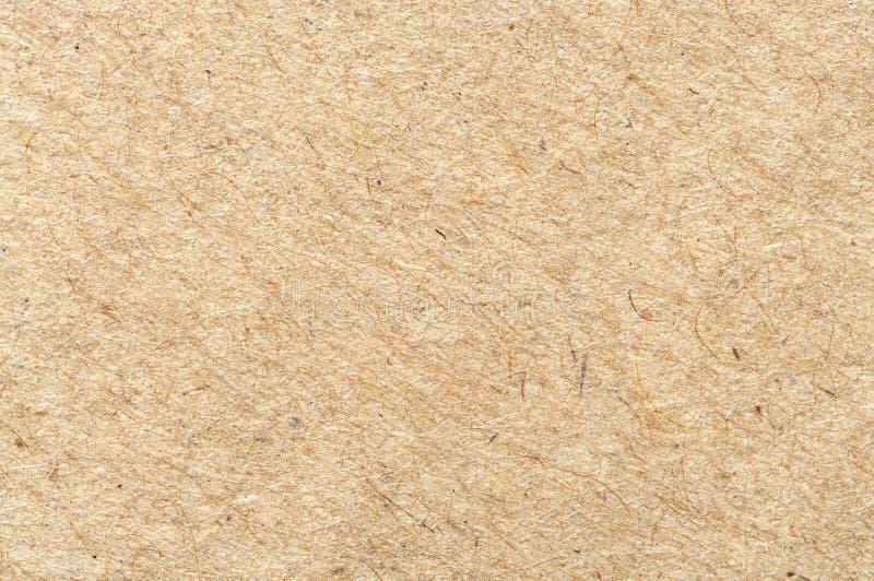 Brown cardboard sheet closeup. royalty free stock photos