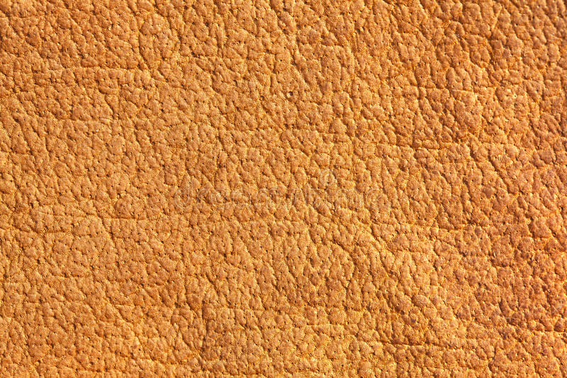 Download Brown chamois texture stock photo. Image of cover, natural - 26106448