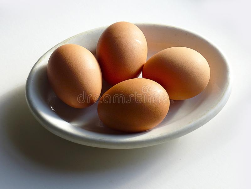 Brown Chicken Egg royalty free stock photography