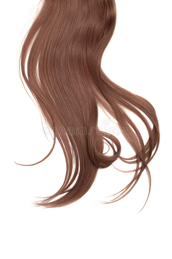 Brown chocolate hair isolated on white background. Long disheveled ponytail. Brown chocolate hair isolated on white background. Long ponytail royalty free stock photos