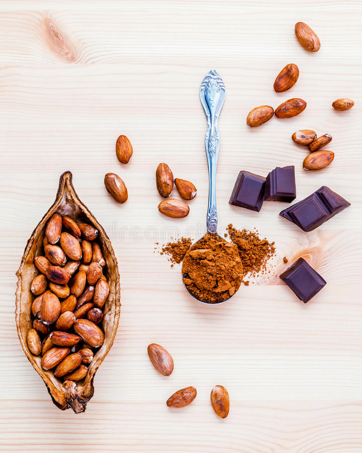 Brown chocolate powder in spoon , Roasted cocoa beans and dark c. Hocolate setup on wooden background stock image
