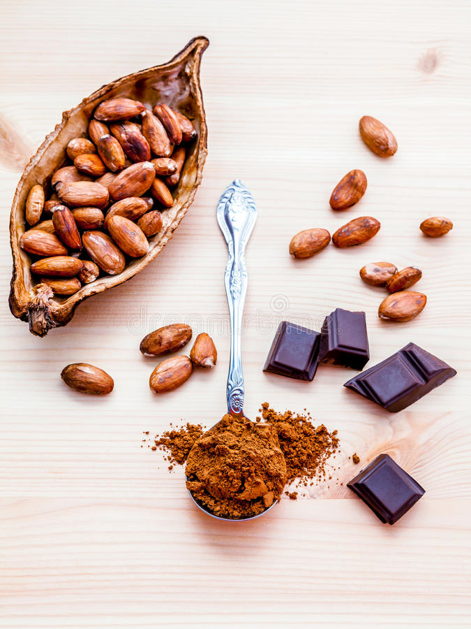 Brown chocolate powder in spoon , Roasted cocoa beans and dark c. Hocolate setup on wooden background. Selective focus depth of field on chocolate powder stock photo
