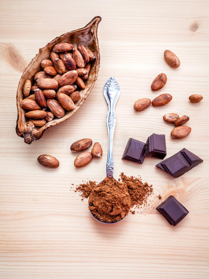 Brown chocolate powder in spoon , Roasted cocoa beans in the dry. Cocoa pod fruit and dark chocolate setup on wooden background stock image