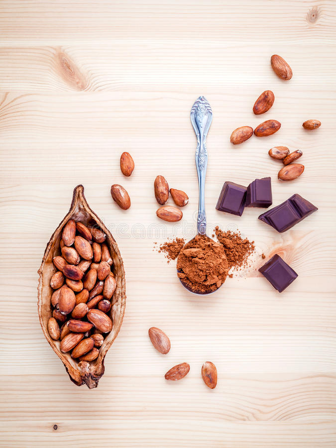Brown chocolate powder in spoon , Roasted cocoa beans in the dry. Cocoa pod fruit and dark chocolate setup on wooden background stock photos