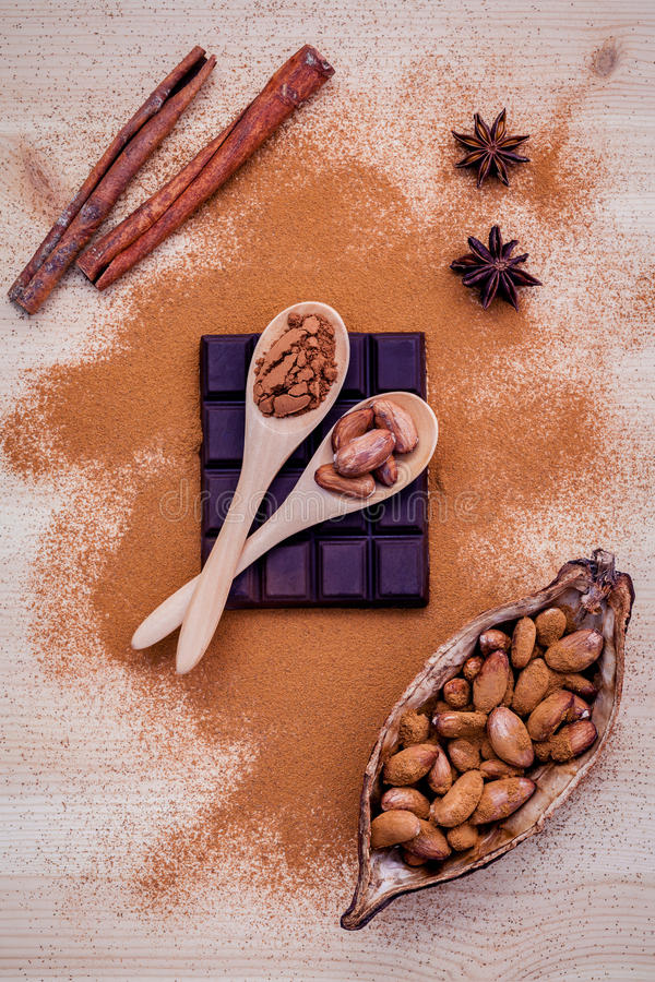 Brown chocolate powder in spoon , Roasted cocoa beans in the dry. Cocoa pod fruit and dark chocolate setup on wooden background stock photo