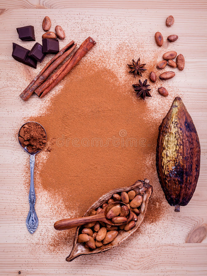 Brown chocolate powder in spoon , Roasted cocoa beans in the dry. Cocoa pod fruit and dark chocolate setup on wooden background royalty free stock photos