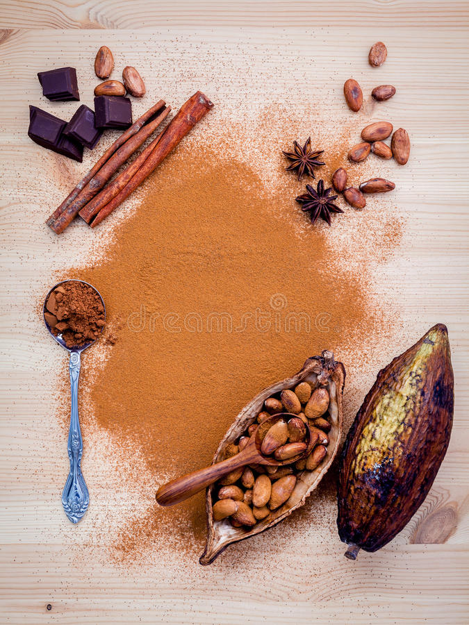 Brown chocolate powder in spoon , Roasted cocoa beans in the dry. Cocoa pod fruit and dark chocolate setup on wooden background royalty free stock photo