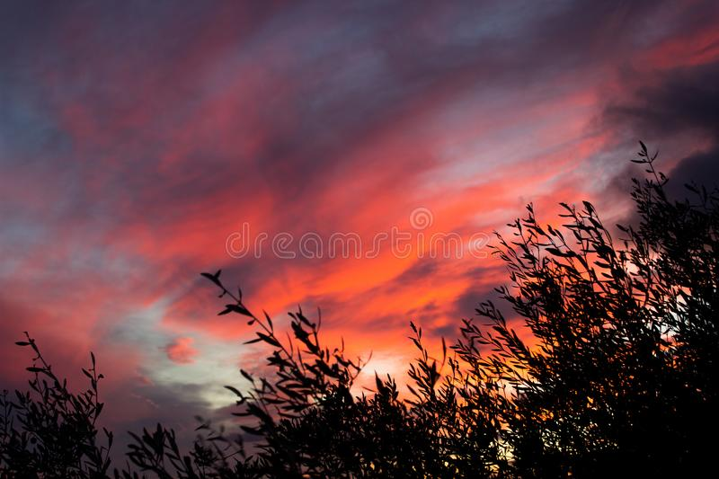Brown Clouds during Sunset royalty free stock photos