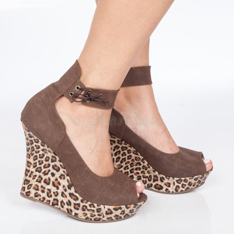 Brown cobre sapatas da plataforma com os laços postos nos pés da mulher sobre o fundo branco imagem de stock royalty free