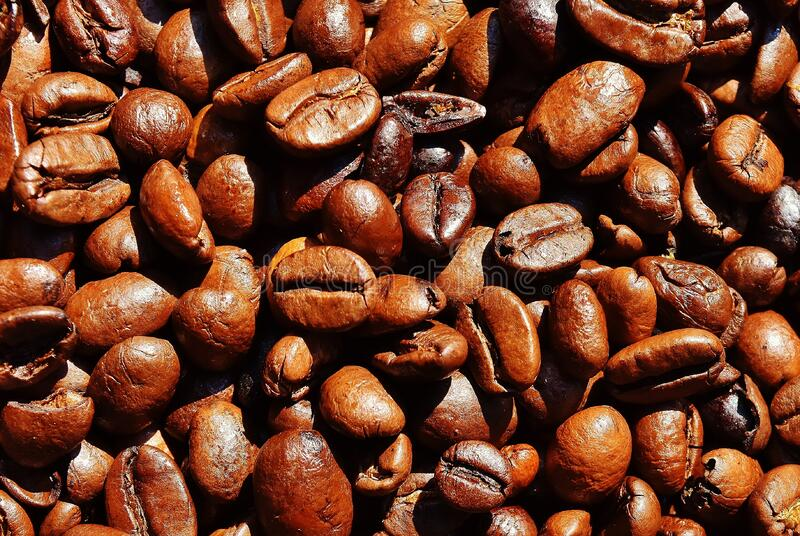 Brown Coffee Bean stock images