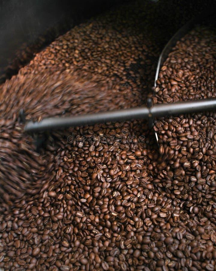 Brown Coffee Beans Free Public Domain Cc0 Image