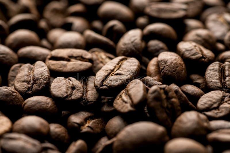 Brown coffee beans closeup macro shot, dark light.  stock image