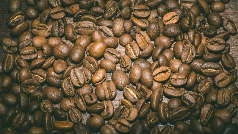 Brown coffee beans in the morning stock image